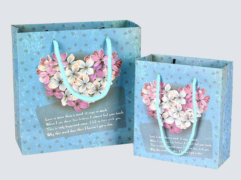 Charm Printing OEM paper gift bags fashion design for gift box-2