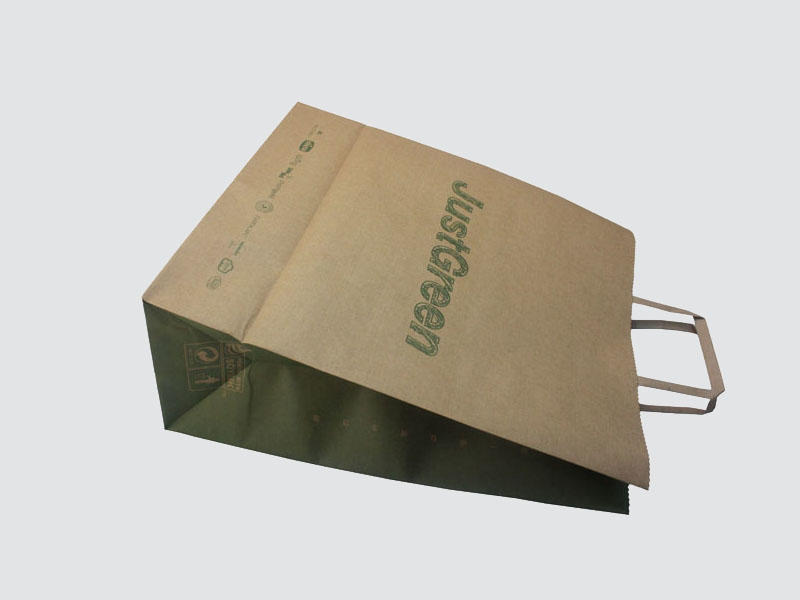 Charm Printing high-quality paper bag on-sale for shopping bag-2
