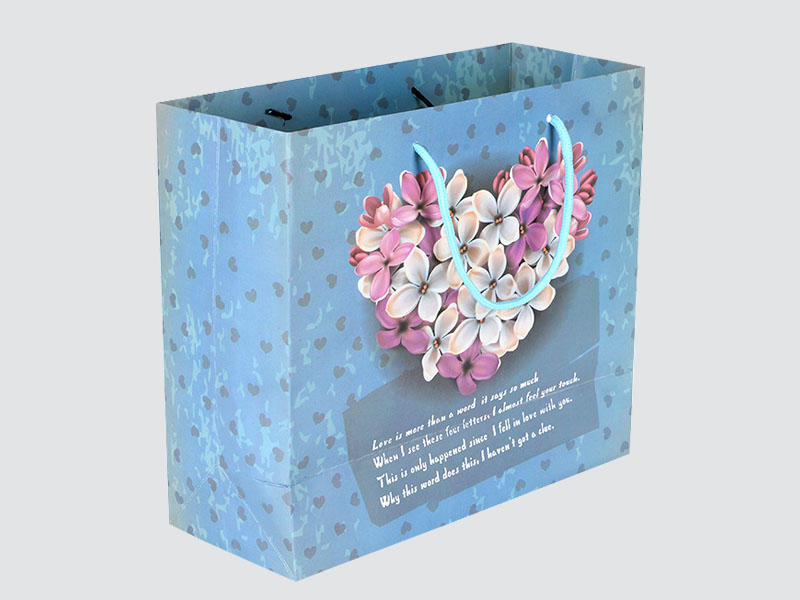 Charm Printing OEM paper gift bags fashion design for gift box-1